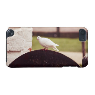 White Dove On A Fence iPod Touch 5G Covers