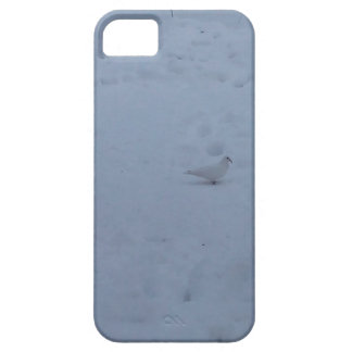 White dove on the snow in the woods iPhone 5 cover