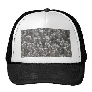 White Dried WildFlowers Hat
