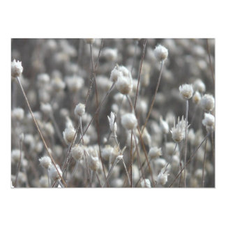 White Dried WildFlowers 5.5x7.5 Paper Invitation Card