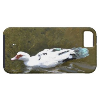 White Duck iPhone 5 Cases