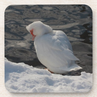white duck in the snow drink coaster