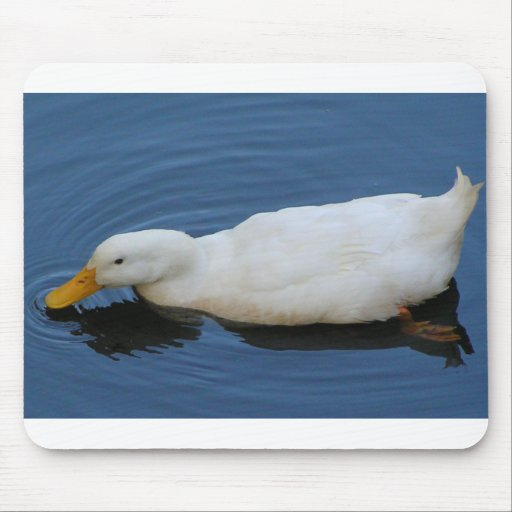 White Duck Mouse Pads