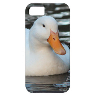 White Duck swimming in a creek Case For The iPhone 5