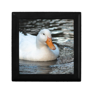 White Duck swimming in a creek Gift Box