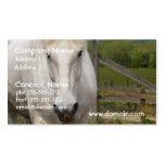 White Equine Business Cards