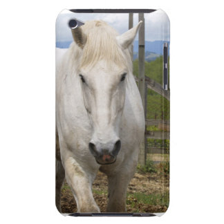 White Equine iTouch Case Barely There iPod Cases