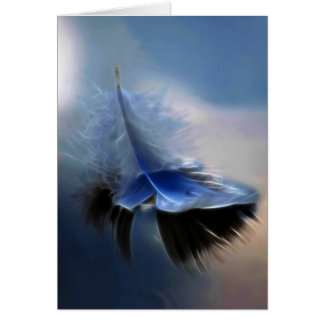White feather sailing card