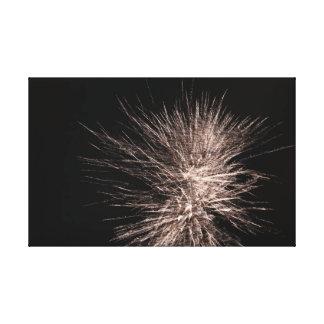 White Firework Canvas Print