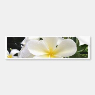 White Floral Bumper Sticker