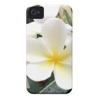 White Floral iPhone 4 Case