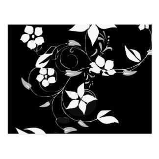 White Floral on Black Postcard