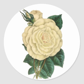 White Floral Vintage Rose Classic Round Sticker