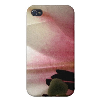 White Flower and Sky iPhone 4 Case