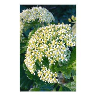 White flower custom stationery