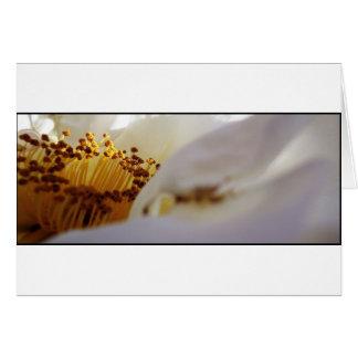 white flower customisable greetings card