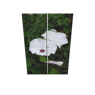 White Flower Four Panel Print