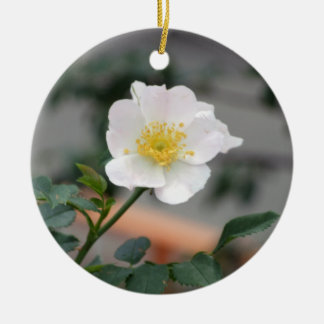 White flower in dim light round ceramic decoration