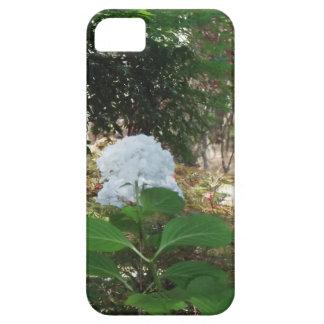 White Flower iPhone 5 Case