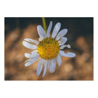 White flower macro business card