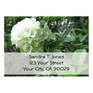 white flower pack of chubby business cards
