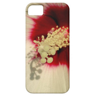 White Flower Photo Phone SE + iPhone 5/5S iPhone 5 Cases