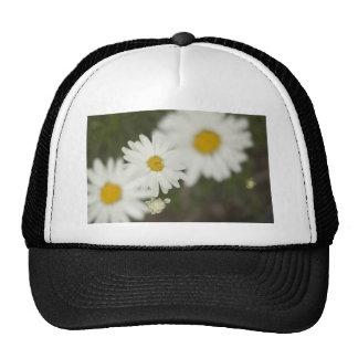 White Floweres Hat