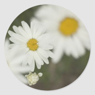 White Floweres Round Sticker