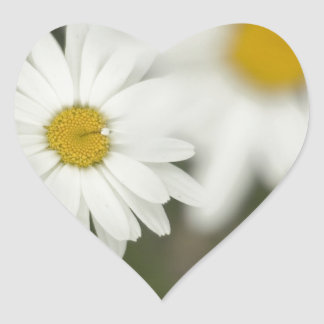 White Floweres Heart Sticker