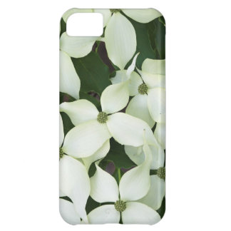 White Flowering Dogwood iPhone 5C Covers