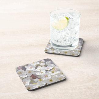 White Flowering Tree Flowers Beverage Coasters