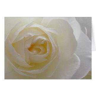 White Flowers Card Rose Flower Greeting Card Blank