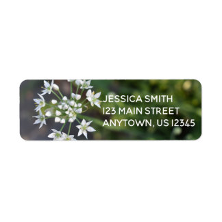 White Flowers Delicate Floral Blossom Nature Photo Return Address Label