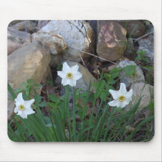 White FLowers in a Rock Garden Mouse Pad