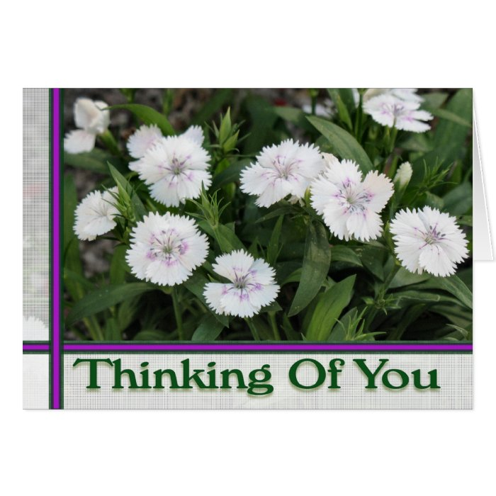 white flowers thinking of you greeting card