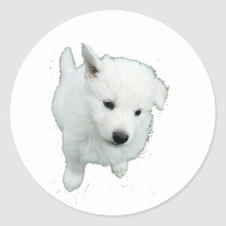 White Fluffy Puppy Classic Round Sticker