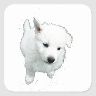 White Fluffy Puppy Square Sticker