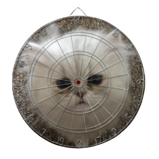 White Fluffy the kitty with sad eyes Dart Board