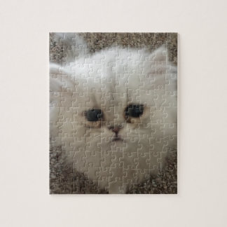 White Fluffy the kitty with sad eyes Jigsaw Puzzle
