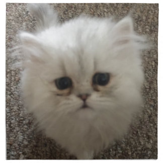 White Fluffy the kitty with sad eyes Napkin