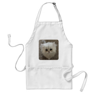 White Fluffy the kitty with sad eyes Standard Apron