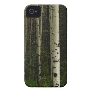 White Forest Case-Mate iPhone 4 Case