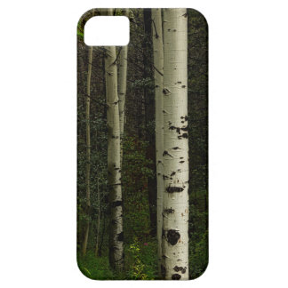 White Forest iPhone 5 Cases