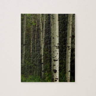 White Forest Jigsaw Puzzle