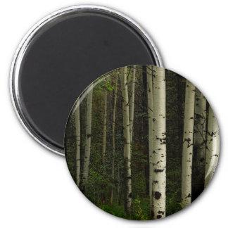 White Forest Magnet