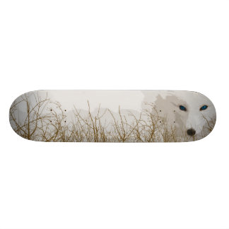 White Fox 19.7 Cm Skateboard Deck