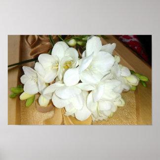White Freesia Bouquet Poster