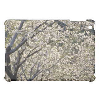 white Fruit trees in bloom, Hood River, Oregon flo iPad Mini Cases