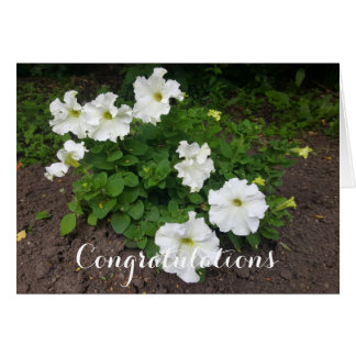 White garden flowers photograph card