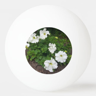White garden flowers photograph ping pong ball
